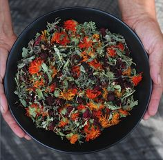This blend is one of my favorite herbal iced teas ~ so nourishing and tart, and helps to keep me hydrated and grounded in the midst of summers flurry of activities. Hibiscus, tulsi, schisandra, rose hips, lemon balm, lemon verbena and calendula.