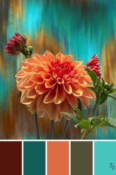 Color Inspiration Colour Palettes 12
