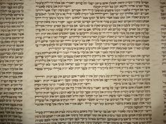 Old Torah Scroll that has been re-lettered to keep it kosher.