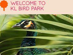 Kuala Lumpur Bird Park • World Largest Free-Flight Walk-In Aviary