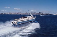 sydney hydrofoil Sydney Ferries, Sydney City, The Old Days, Historical Pictures, Old Photos, Old Things, Curl Curl, Australia, History