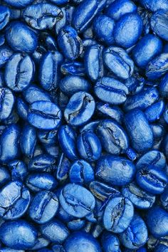 okay but it's blue coffee beans. Azul Indigo, Bleu Indigo, Rainbow Aesthetic, Blue Aesthetic, Azul Real, Everything Is Blue, Blue Food, Himmelblau, Cobalt Blue