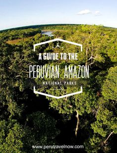 Travel Peru l A Guide to the National Parks in the Peruvian Amazon l /perutravelnow/