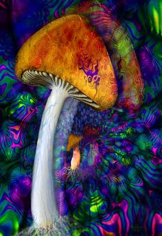 Psychedelic Peace Fantasy Shroom ~ by rhesusmonkey Hippie Trippy, Hippie Art, Trippy Pictures, Wallpaper Pictures, Psychadelic Art, Mushroom Art, Psy Art, Arte Pop, Visionary Art