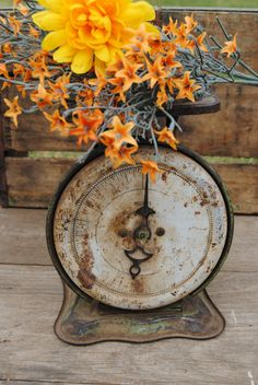 Looks cute with wooden bowl too. Old Kitchen scale (1800's) worth about $30.00 in rusty condition.
