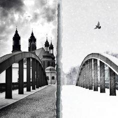 iPhonography, Michal Koralewski