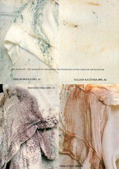 Martin Margiela Bacteria/Mold experiment on garments
