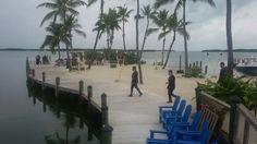 Isla Morada Fish Company Wedding Ceremony, Street View, Fish, Beautiful, Pisces