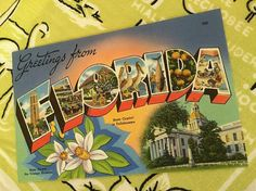 Vintage Florida postcard large letter linen greetings from Florida Tallahassee orange blossoms Bok Tower
