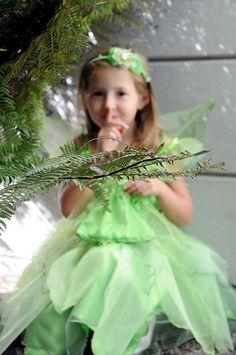 shhh...faeries