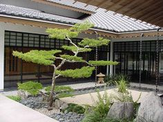 Morikami Museum and Japanese Gardens in Delray Beach Florida