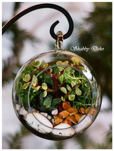 Glass Ball, Terrarium, Christmas Bulbs, Holiday Decor, Home Decor, Terrariums, Decoration Home, Christmas Light Bulbs, Room Decor