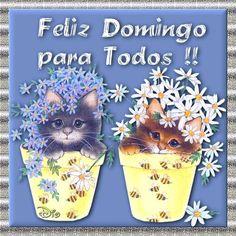 Feliz Domingo para Todos!!