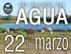 22 de marzo Día mundial del agua.