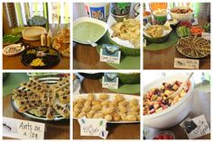 Wild Kratts Party Food