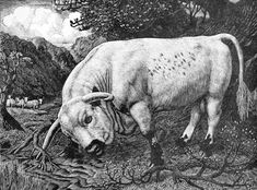 The Charley Bull, 1939, for the Royal Academy, Charles Tunnicliffe, wood engraving