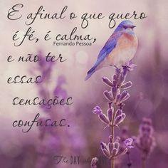 #Fe   #Crer   #Esperar   #Deus   #Agir  #Atitude