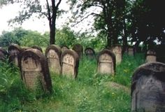 Ozarow Cemetery Restoration Project - About Us