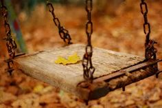 One single yellow fall leaf on wooden tree swing,   Esperando Al OtoñO...