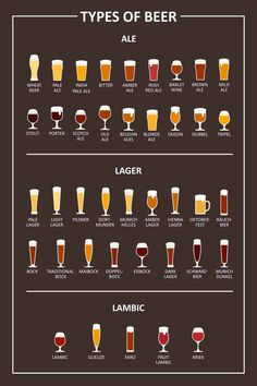 42 Different Types of Beer – How Well Do You Know Your Beer Options Beer Types, Different Types Of Beer, Alcohol Drink Recipes, Beer Recipes, Homebrew Recipes, Beer Infographic, Porter Beer, Beer Pairing, Home Brewing Beer