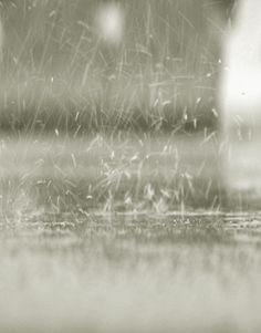 ENGAGING rain...