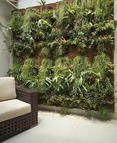 Jardim de epífitas em interiores - www.casaecia.arq.br Cursos on line: Design de Interiores - Paisagismo e Jardinagem