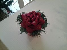 Fiore di Natale