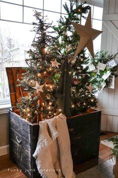 Prim Tree in a crate......