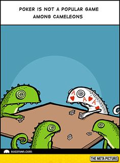 Funny pictures about why chameleons don't play poker. oh, and cool pics about why chameleons don't play poker. also, why chameleons don't play poker photos. Memes Humor, Funny Memes, Funniest Memes, Poker Face, Haha, Spanish Jokes, Humor Grafico, Funny Cartoons, Just For Laughs