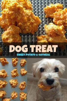 Instead of using white flour in your dog cookies or any other homemade dog food, you can use whole grains like quinoa, oats and brown rice instead. Puppy Treats, Diy Dog Treats, Healthy Dog Treats, Dog Biscuit Recipes, Dog Treat Recipes, Dog Food Recipes, Food Tips, Salad Recipes, Food Ideas