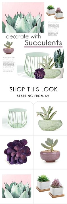 """""""Decorate with Plants- Suculents"""" by groove-muffin ❤ liked on Polyvore featuring interior, interiors, interior design, home, home decor, interior decorating, Skargaarden and Chen Chen & Kai Williams"""