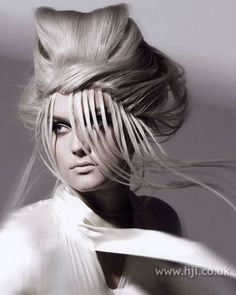 Photo of 2009 avant garde hairstyle
