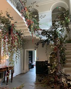 @everbloomdesignmemphis • Instagram photos and videos Wedding Staircase, Photo And Video, Videos, Photos, Instagram, Home Decor, Pictures, Homemade Home Decor, Decoration Home