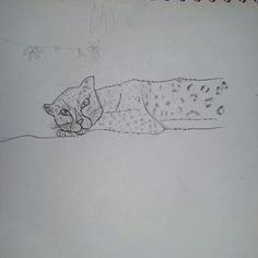 Leopard.#30doodles  Repin with credit. Drawn by Blaze Runner ( Alphaheart ).