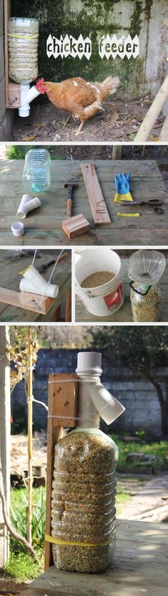 recycling pallet and plastic water bottle into a chicken feeder.