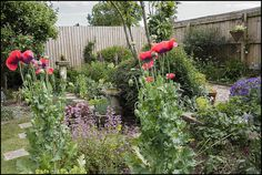 18 Fantastic Gardens