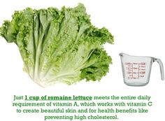 Just 1 Cup of Romaine Lettuce...