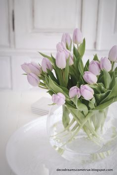 ...sind sie nicht herrlich, die wundervollen Frühlingsboten, die Tulpen. Ich liebe diese wunderschöne Zwiebelblume! Ich freue mic...