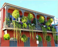 Balcony in Quarter with Streamers I love the Quarter and garden district.