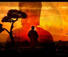Consciousness, Witnessing, & Awareness ~ Osho