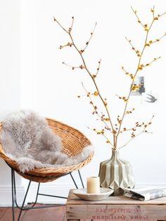 NATUR MUSS SEIN  Holen sie die Natur ins Haus! Gefundenes ist oft schöner als Gekauftes: Steine, Zweige, Blüten und Früchte kosten nichts un...
