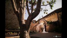 April & Eugene Highlight | Serra Plaza San Juan Capistrano Cinema Wedding, Wedding Cinematography, San Juan Capistrano, Wedding Highlights, Travel Themes, Orange County, Videography, Plants, Plant