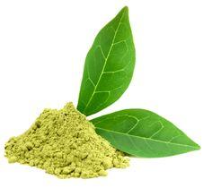 Matcha Green Tea Powder - ORGANIC