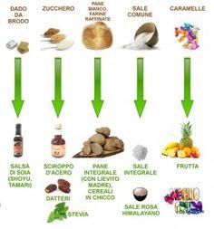 La transizione – primi passi verso un'alimentazione migliore (parte seconda)