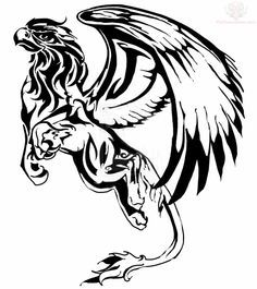Griffin Tattoo Design For Young : Griffin Tattoos Tribal Tattoos, Celtic Tattoos, Cool Tattoos, Fantasy Creatures, Mythical Creatures, Griffon Tattoo, Simbols Tattoo, Rolex Tattoo, Farsi Tattoo