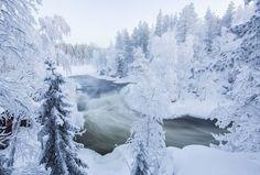 Pakkaspäivä Myllykoskella #Myllykoski #Kitkajoki #Kuusamo  photo by Maarit Latvala - Satu Karlin (@KarlinSatu) | Twitter