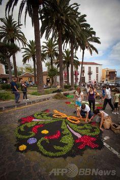 スペイン領カナリア(Canary)諸島テネリフェ(Tenerife)島にあるラ・オロタバ(La Orotava)で、カトリックの「聖体祭(Corpus Christi)」を祝い、地面に花絵を描く人々(2014年6月26日撮影)。(c)AFP/DESIREE MARTIN ▼28Jun2014AFP 聖体祭祝う宗教画、街のあちこちに スペイン・テネリフェ島 http://www.afpbb.com/articles/-/3019009 #Tenerife #La_Orotava #Corpus_Christi