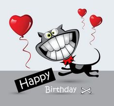 101 Funny Cat Birthday Memes for the Feline Lovers in Your Life Happy Birthday Crazy Lady, Happy Birthday Funny, Happy Birthday Quotes, Happy Birthday Greetings, Birthday Messages, Funny Birthday Cards, Happy Birthday Cartoon Images, Cat Birthday Memes, Birthday Games