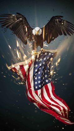 20 Ideas De Banderas En 2021 Banderas Bandera Bandera De Estados Unidos