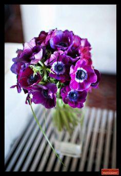 Boston Wedding Photography, Boston Event Photography, Floral Inspiration, Purple Wedding Flowers, Purple Event Flowers, Spring Event Decor